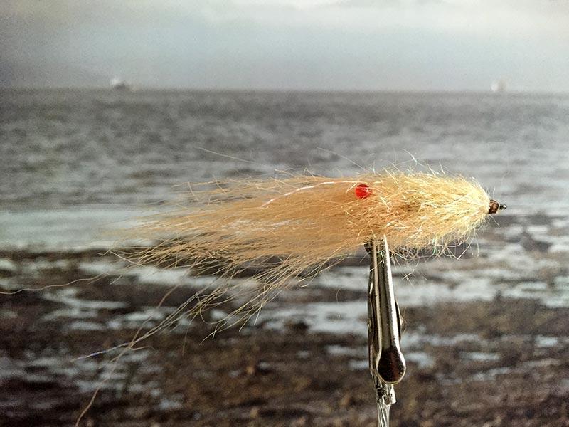 String Shrimp