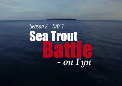 Sea Trout Battle on Fyn 2.1