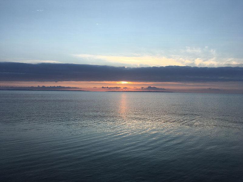 En morgen der lugter af fisk – nærmere betegnet to mindre hornfisk