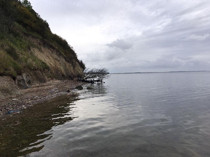 Ægte havørredkyst – uden havørreder