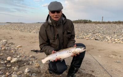 Tilbagevendt fiskefeber